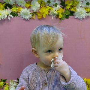 baby sniffing a flower